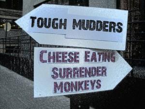 cheese monkey